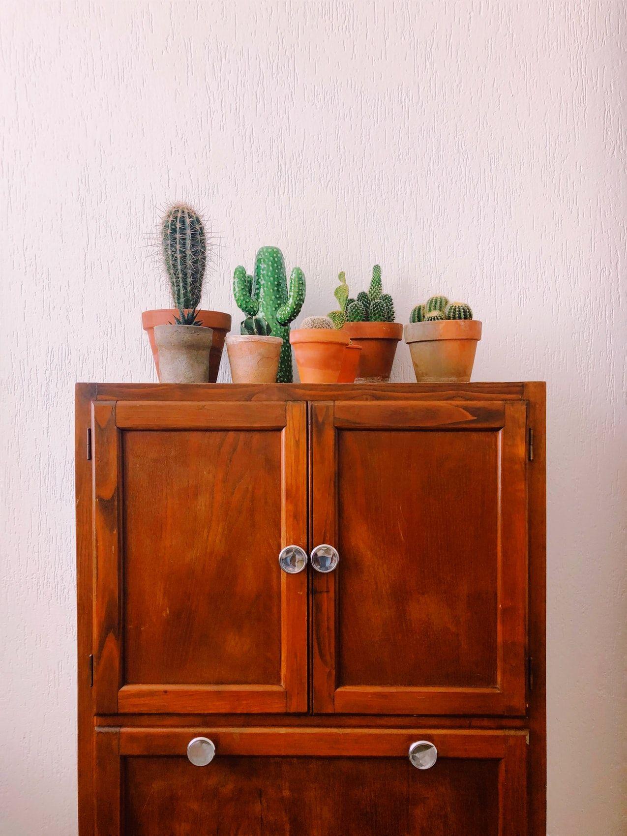 diferencia cupboard cabinet